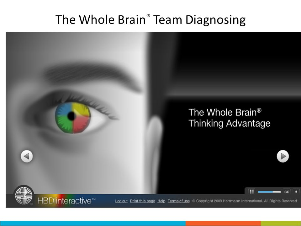 The Whole Brain® Team Diagnosing