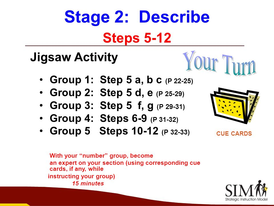Stage 2: Describe Steps 5-12