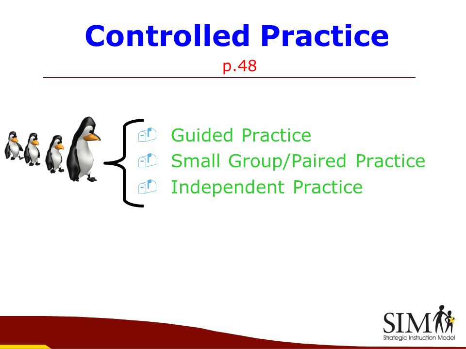 Controlled Practice Guided Practice Small Group/Paired Practice
