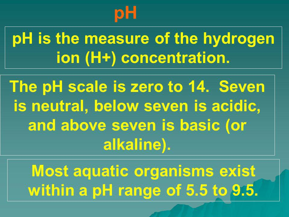 pH pH is the measure of the hydrogen ion (H+) concentration.