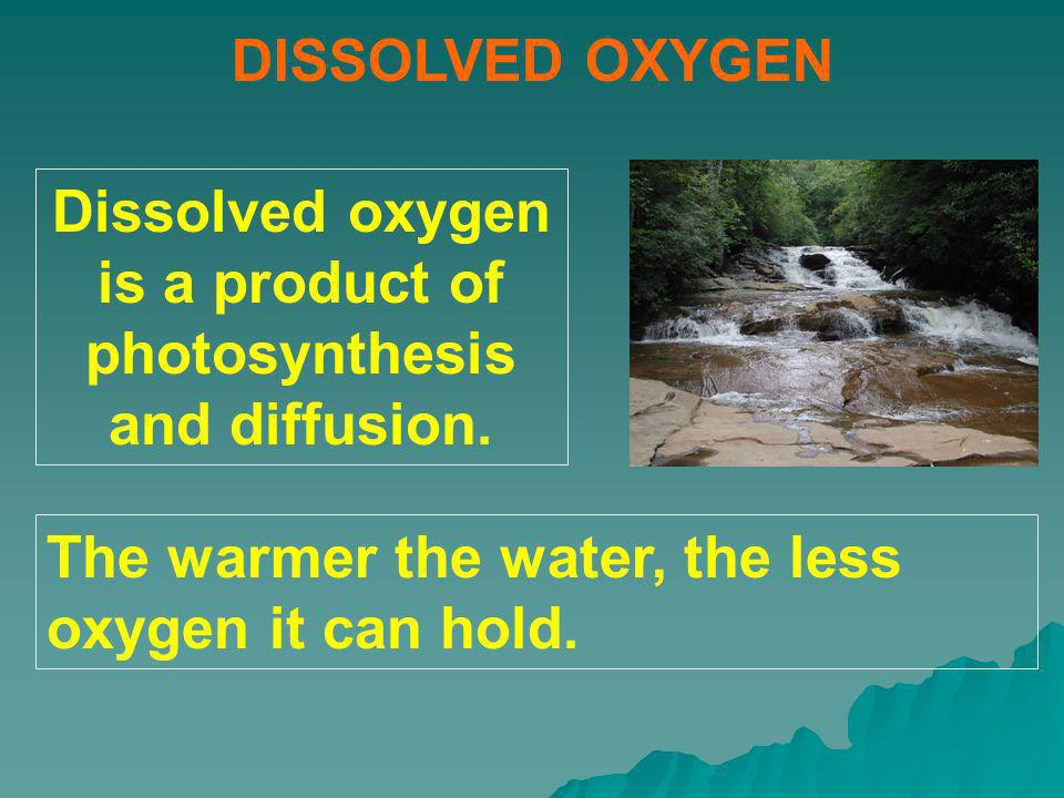Dissolved oxygen is a product of photosynthesis and diffusion.