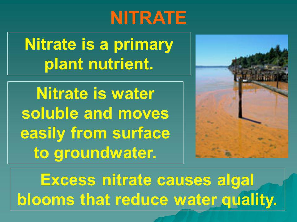 NITRATE Nitrate is a primary plant nutrient.