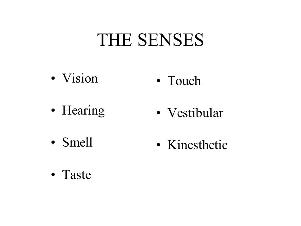 THE SENSES Vision Hearing Smell Taste Touch Vestibular Kinesthetic