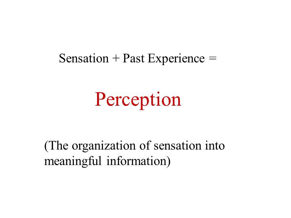 Perception Sensation + Past Experience =