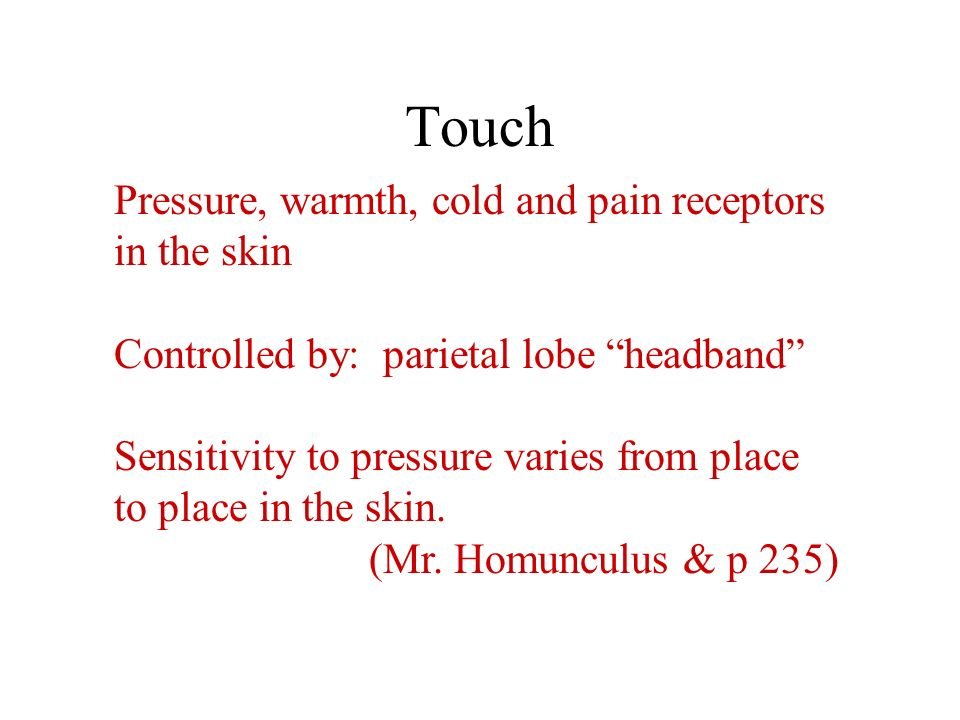Touch Pressure, warmth, cold and pain receptors in the skin