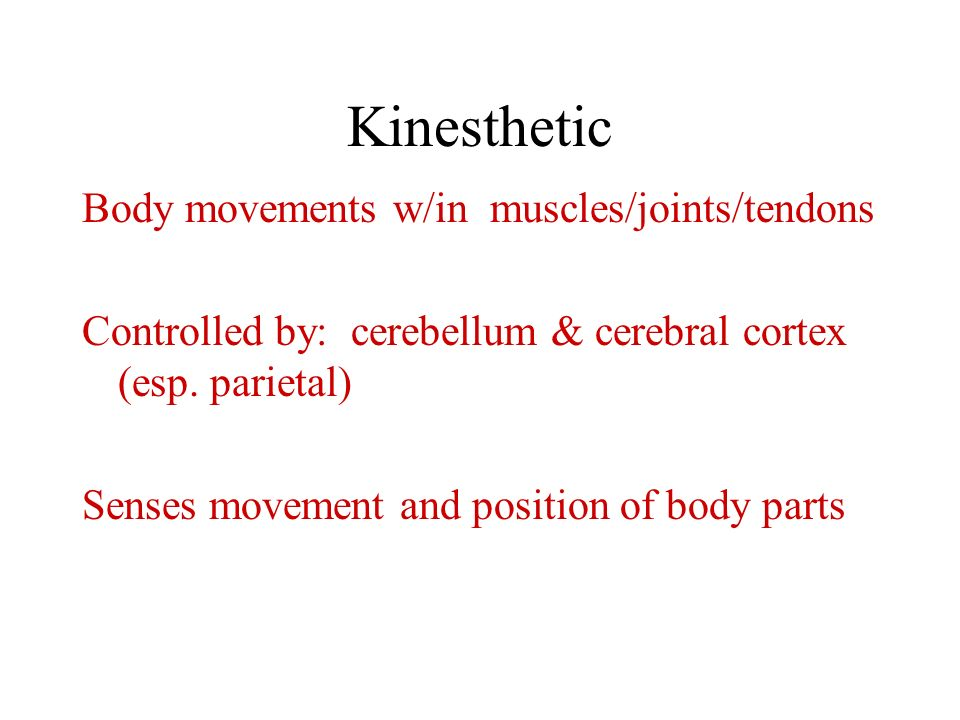 Kinesthetic Body movements w/in muscles/joints/tendons
