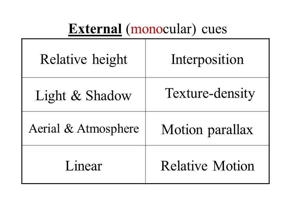 External (monocular) cues
