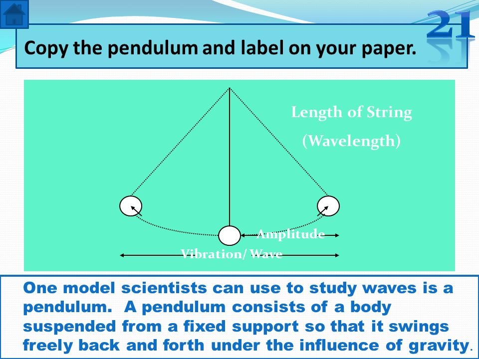 Copy the pendulum and label on your paper.