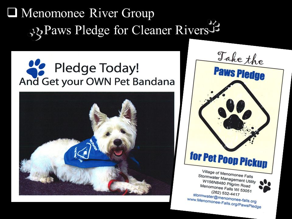 Paws Pledge for Cleaner Rivers
