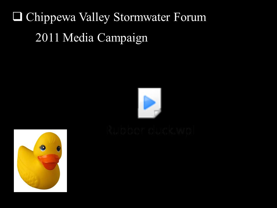 Chippewa Valley Stormwater Forum