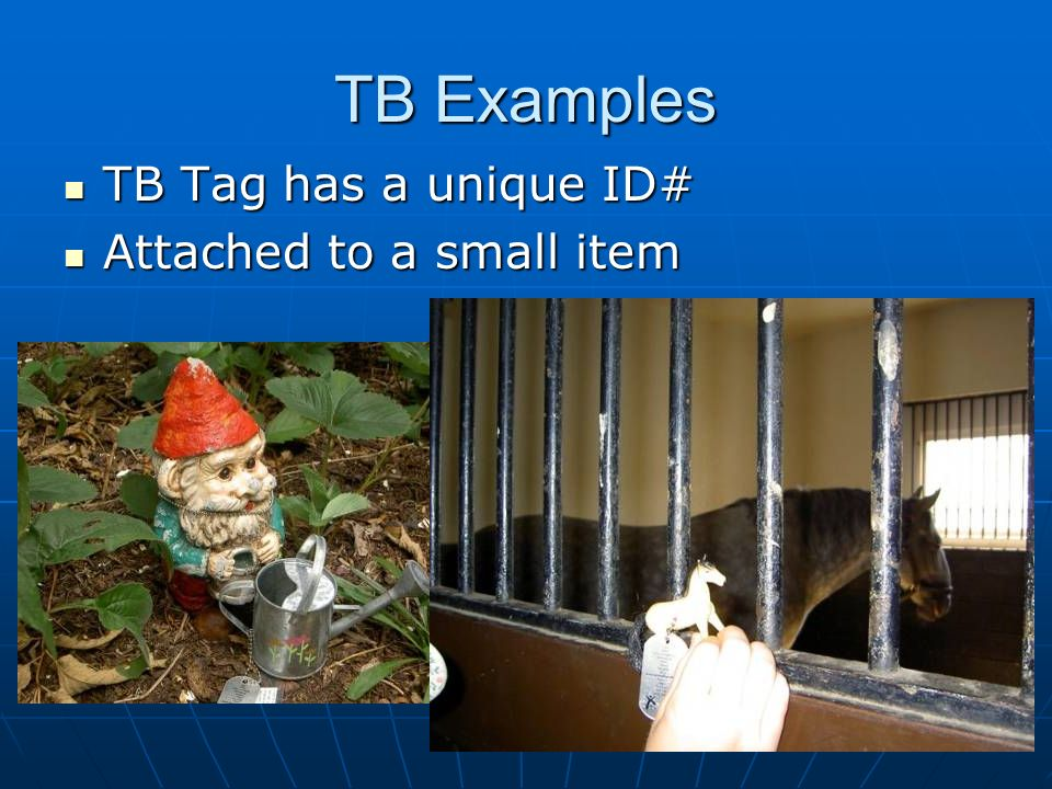 TB Examples TB Tag has a unique ID# Attached to a small item