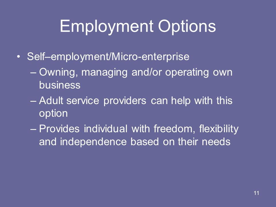 Employment Options Self–employment/Micro-enterprise