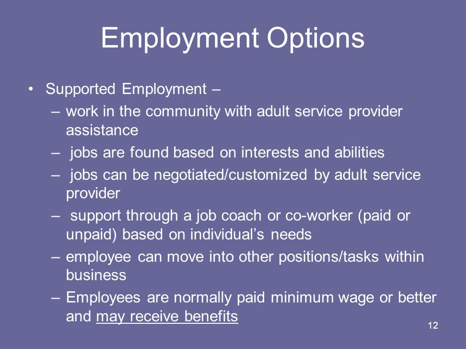 Employment Options Supported Employment –
