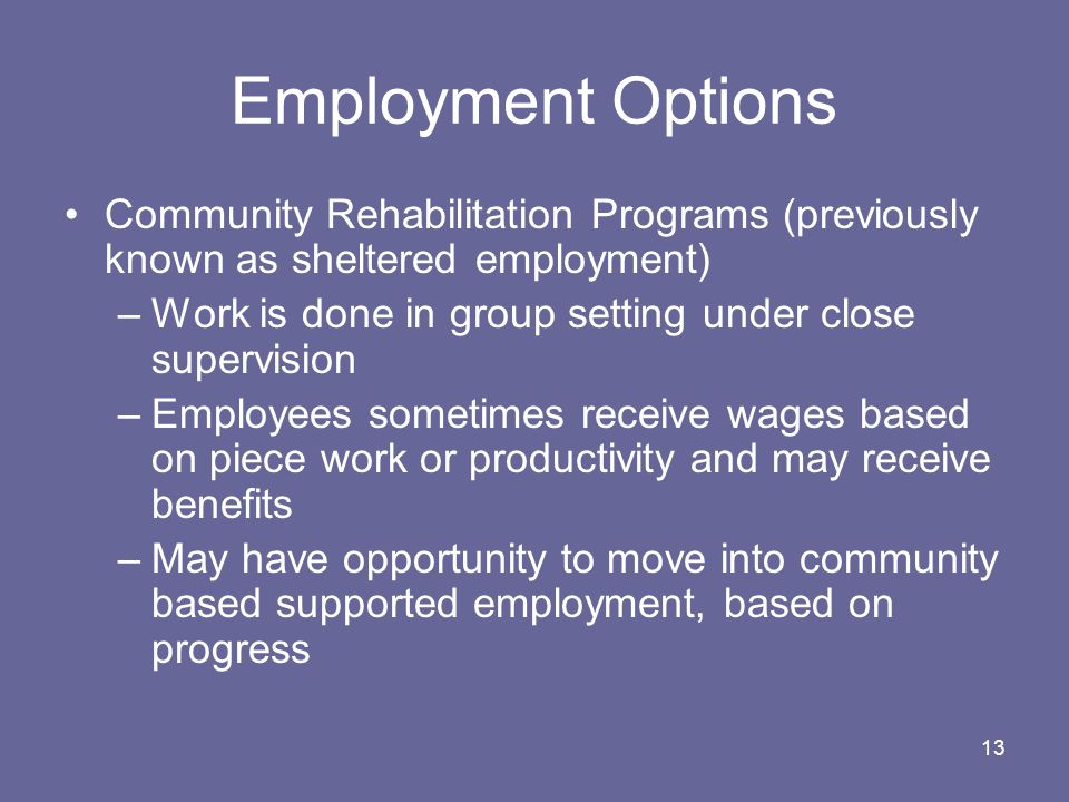 Employment Options Community Rehabilitation Programs (previously known as sheltered employment)