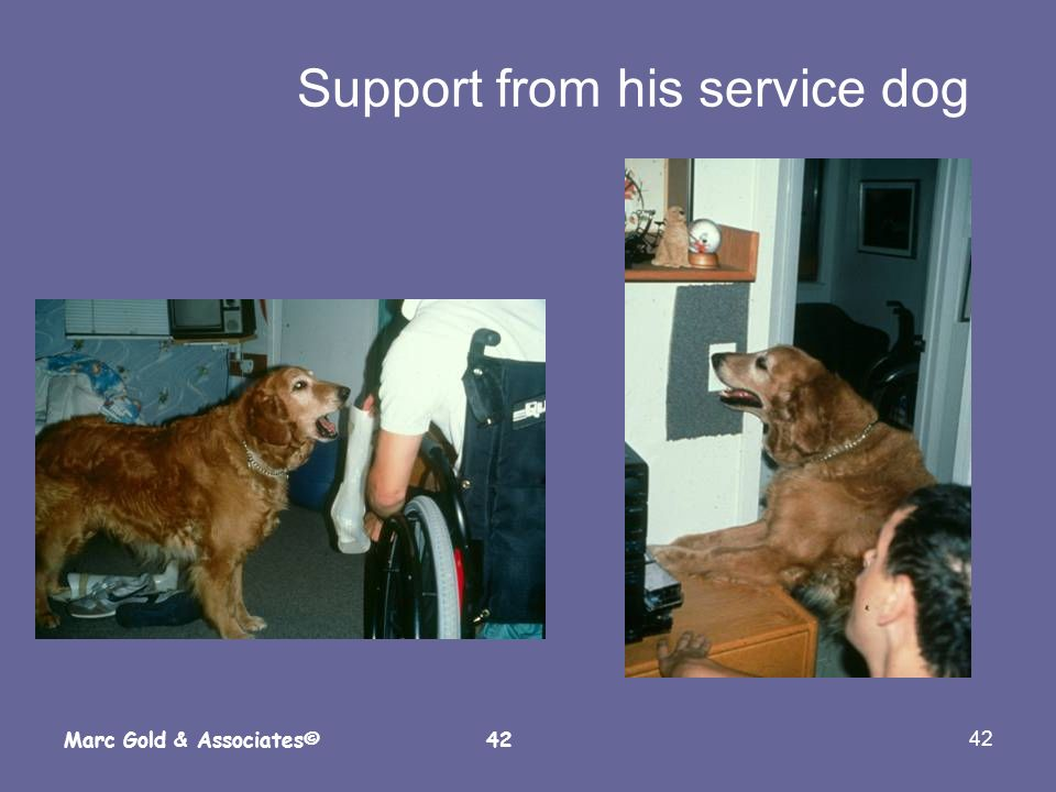 Support from his service dog