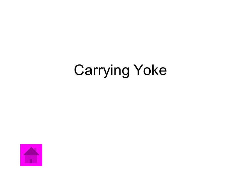 Carrying Yoke