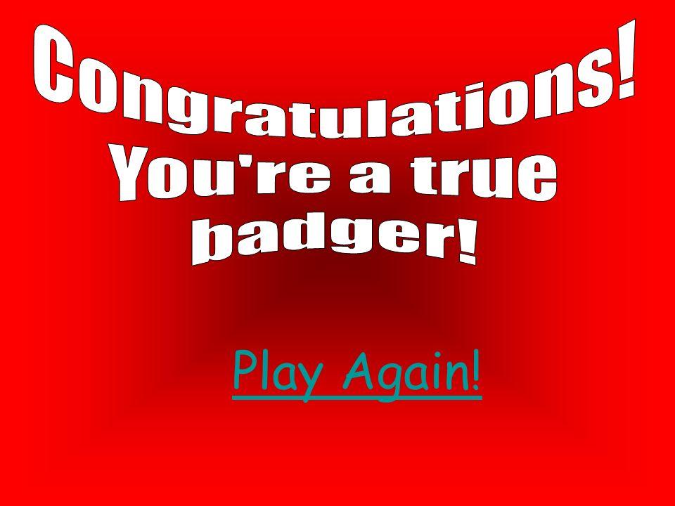 Congratulations! You re a true badger! Play Again!
