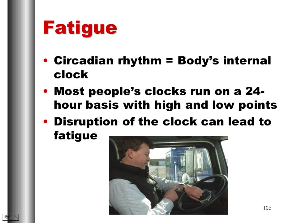 Fatigue Circadian rhythm = Body's internal clock