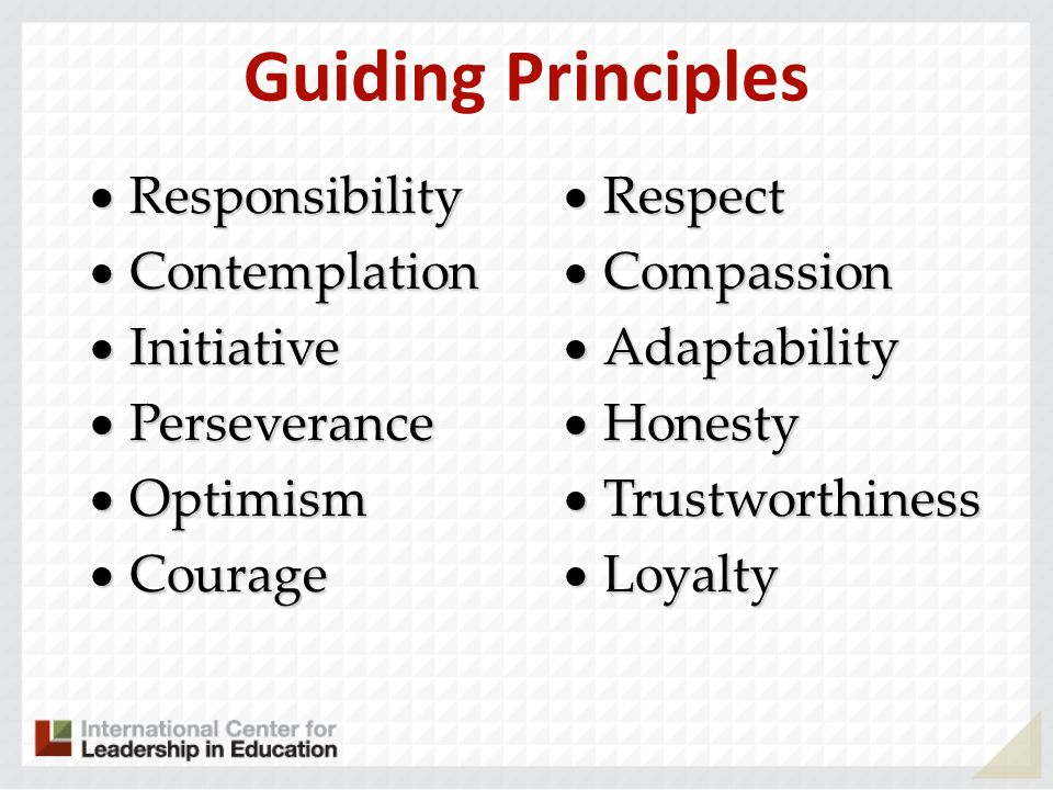 Guiding Principles Responsibility Contemplation Initiative