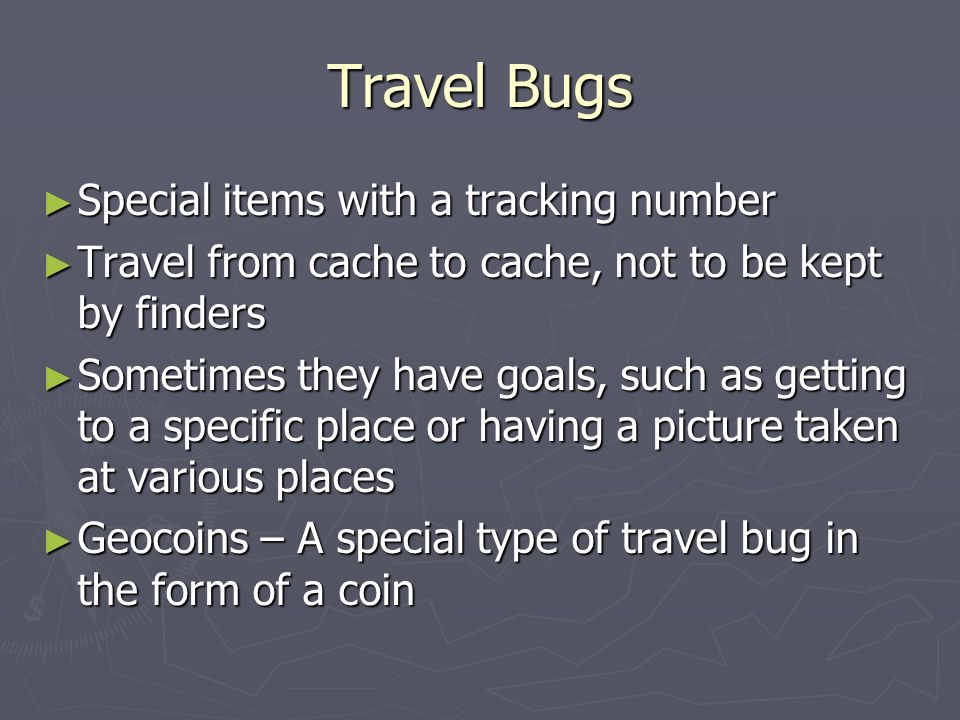 Travel Bugs Special items with a tracking number