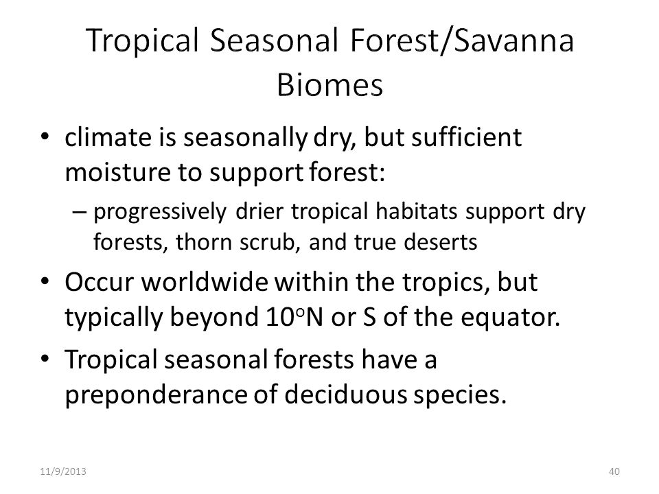 Tropical Seasonal Forest/Savanna Biomes