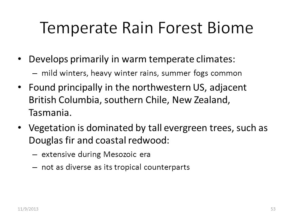 Temperate Rain Forest Biome