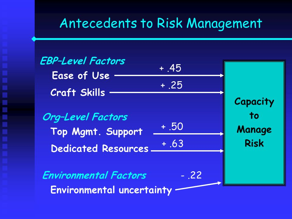 Antecedents to Risk Management