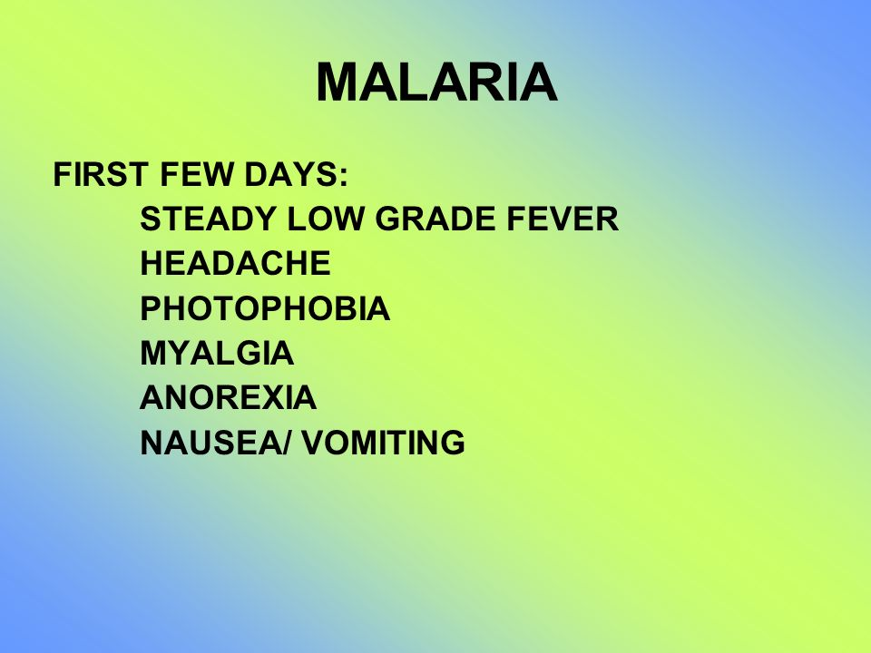 MALARIA FIRST FEW DAYS: STEADY LOW GRADE FEVER HEADACHE PHOTOPHOBIA