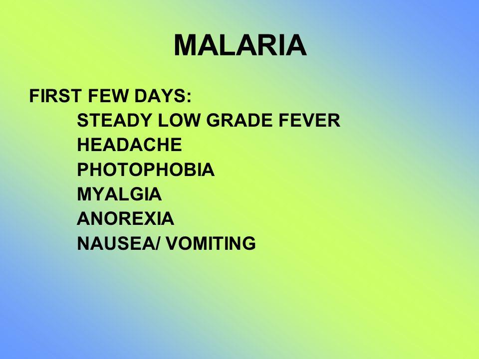 MALARIA FIRST FEW DAYS: STEADY LOW GRADE FEVER HEADACHE PHOTOPHOBIA