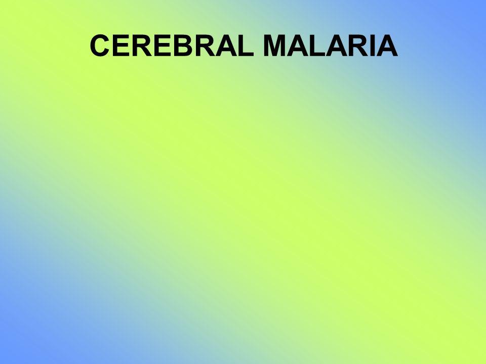 CEREBRAL MALARIA