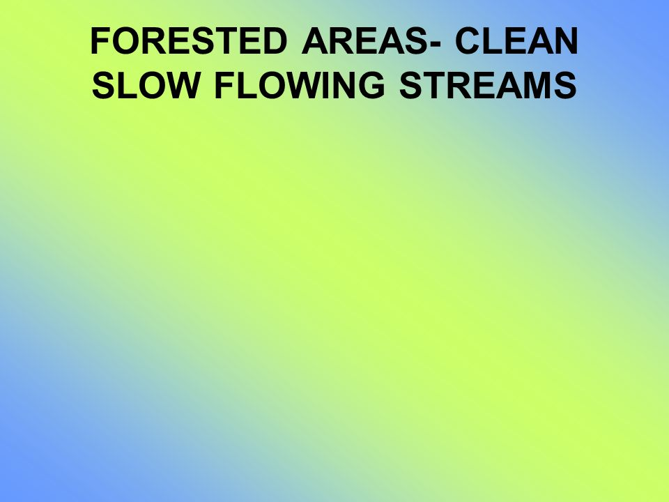 FORESTED AREAS- CLEAN SLOW FLOWING STREAMS