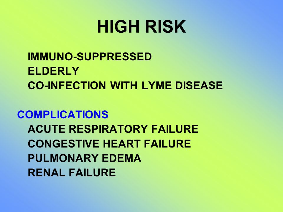HIGH RISK IMMUNO-SUPPRESSED ELDERLY CO-INFECTION WITH LYME DISEASE