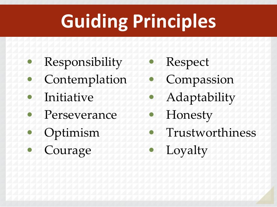 Guiding Principles Responsibility Respect Contemplation Compassion