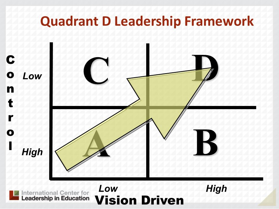Quadrant D Leadership Framework