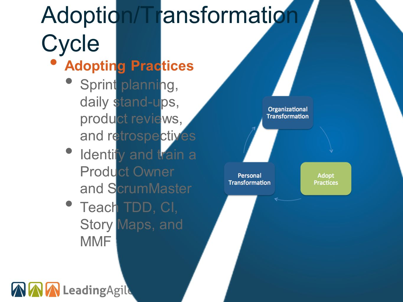 Adoption/Transformation Cycle