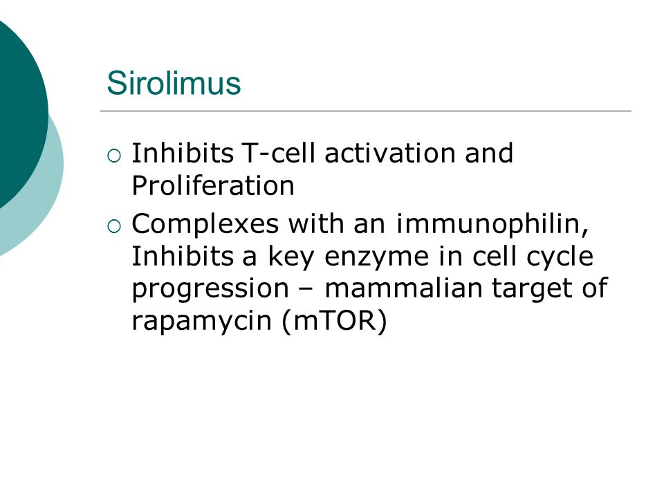 Sirolimus Inhibits T-cell activation and Proliferation
