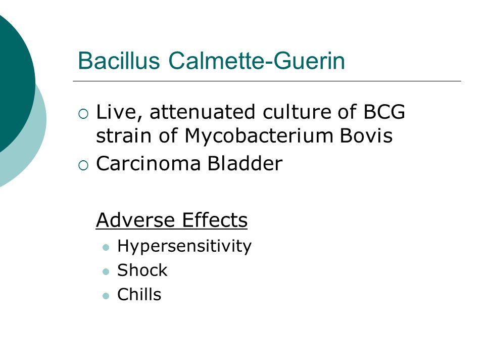 Bacillus Calmette-Guerin