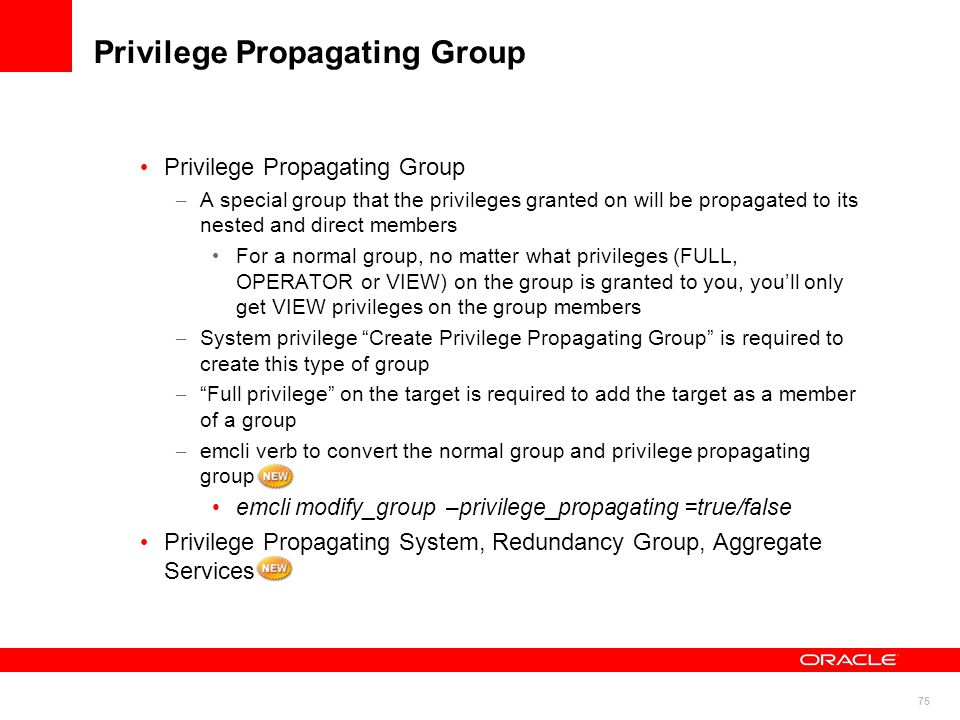 Privilege Propagating Group