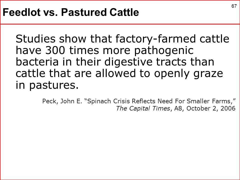Feedlot vs. Pastured Cattle