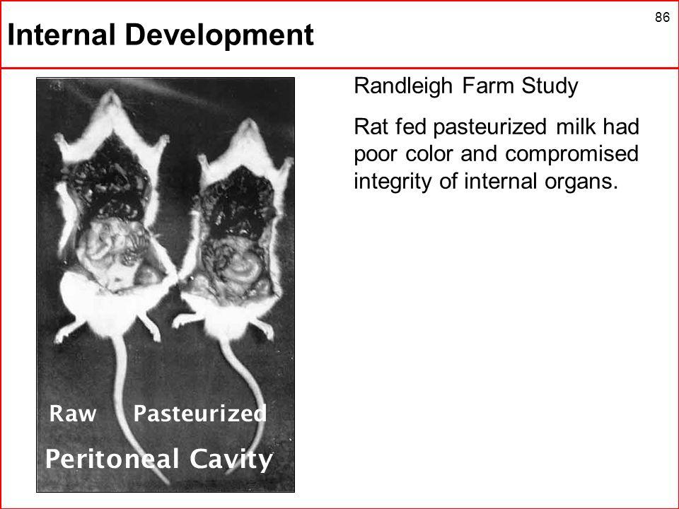 Internal Development Peritoneal Cavity Randleigh Farm Study