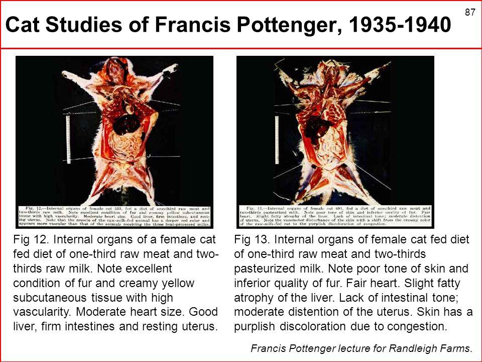 Cat Studies of Francis Pottenger, 1935-1940