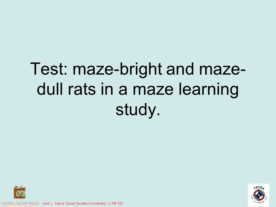 Test: maze-bright and maze-dull rats in a maze learning study.