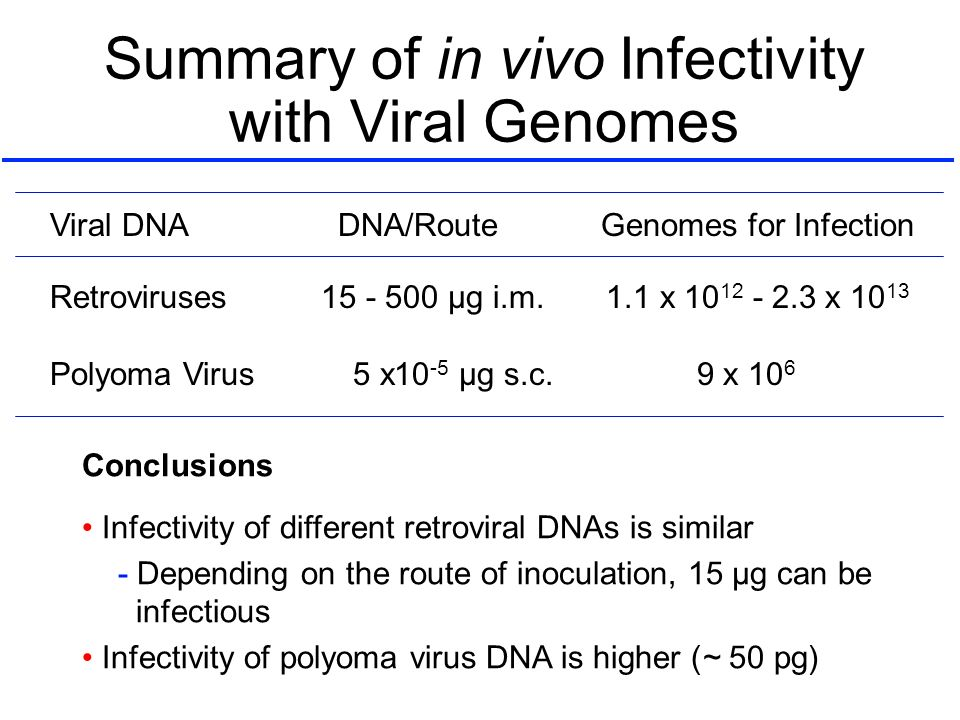 Summary of in vivo Infectivity with Viral Genomes