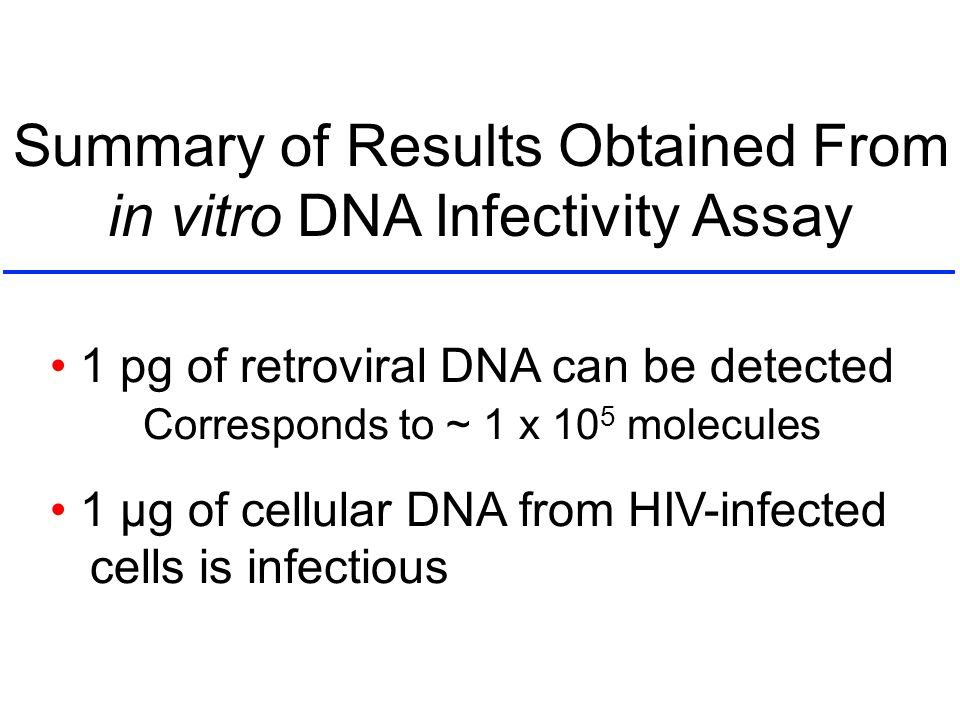 Summary of Results Obtained From in vitro DNA Infectivity Assay