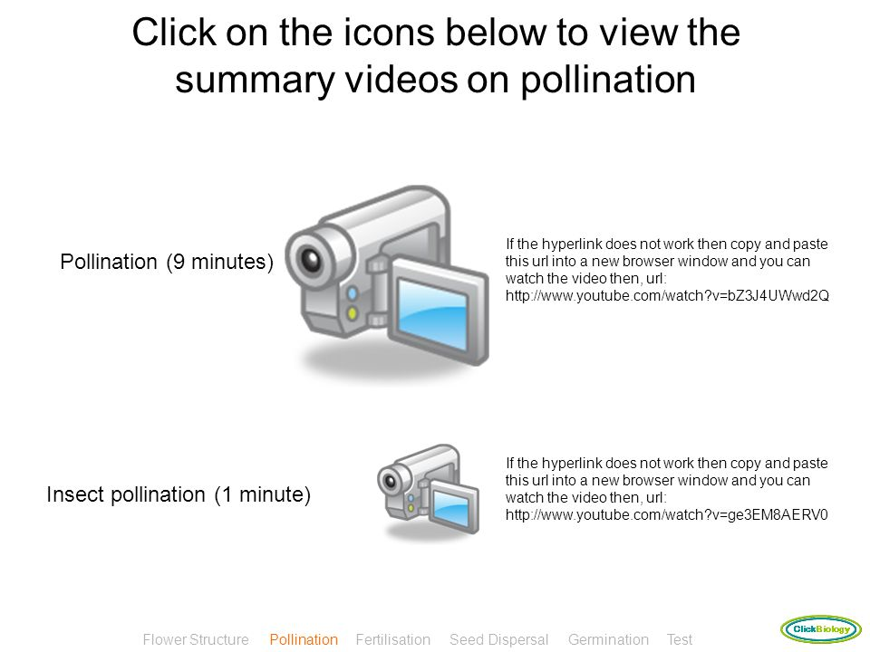 Click on the icons below to view the summary videos on pollination