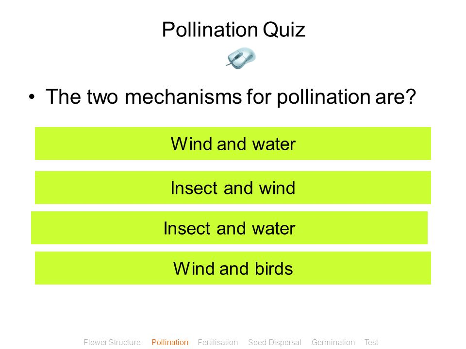 The two mechanisms for pollination are