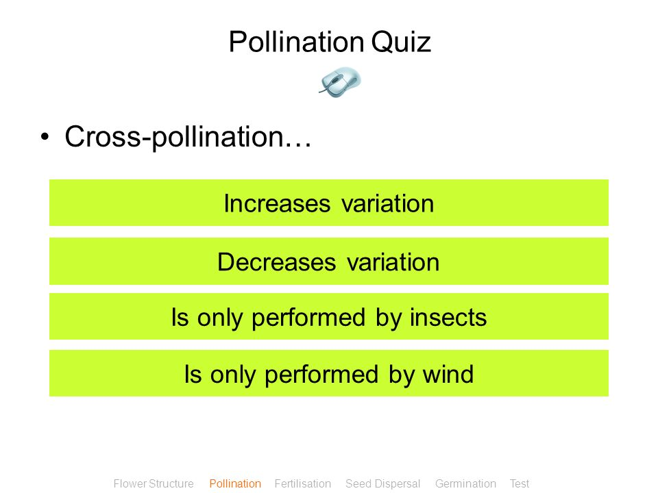 Pollination Quiz Cross-pollination… Increases variation
