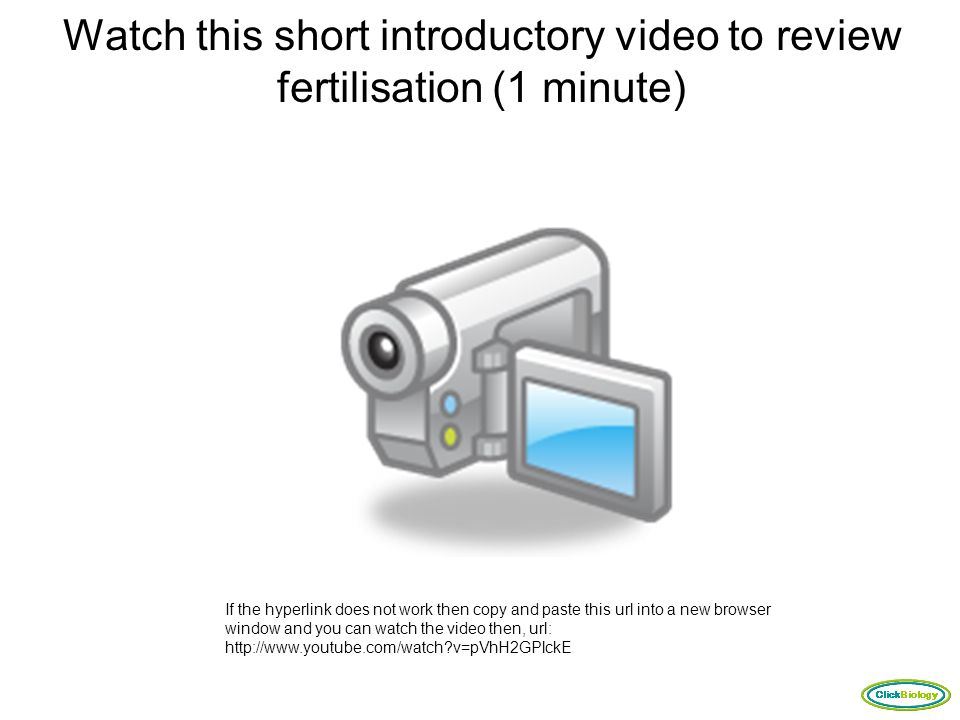 Watch this short introductory video to review fertilisation (1 minute)