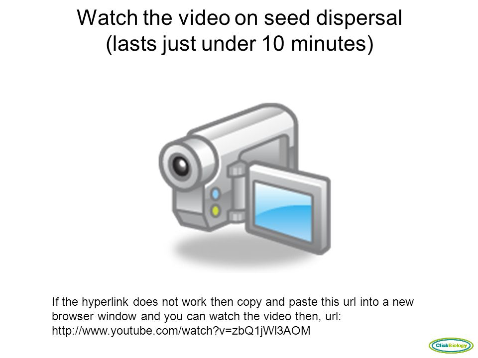 Watch the video on seed dispersal (lasts just under 10 minutes)
