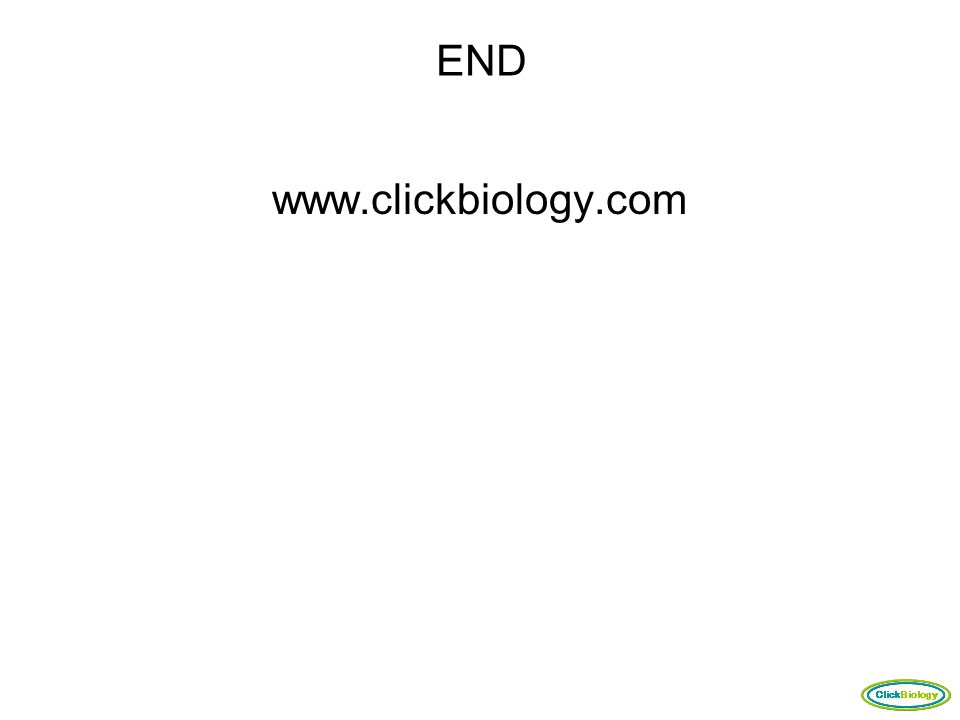 END www.clickbiology.com